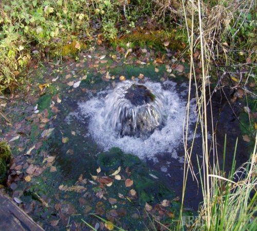 Фото бьющего из-под земли водяного источника