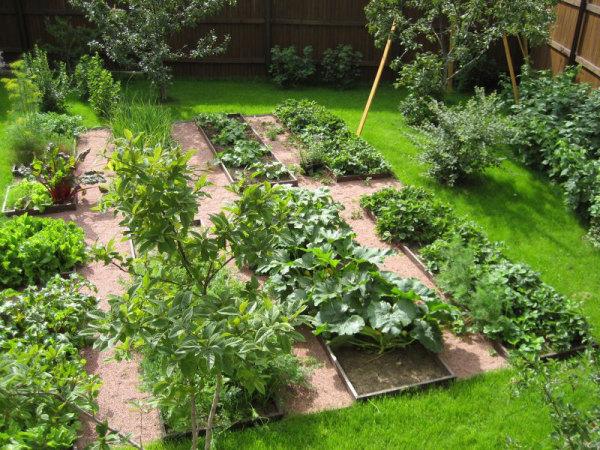 Хороший огород нуждается в обильном поливе