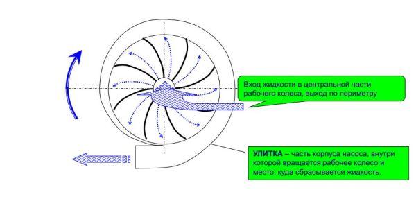 Принцип работы центробежных насосов.