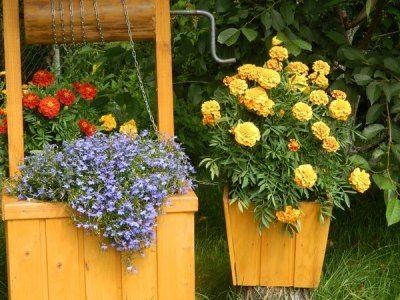 Цветочная клумба в колодце