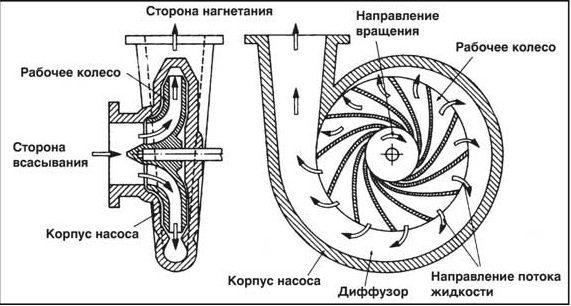 Устройство центробежного насоса.