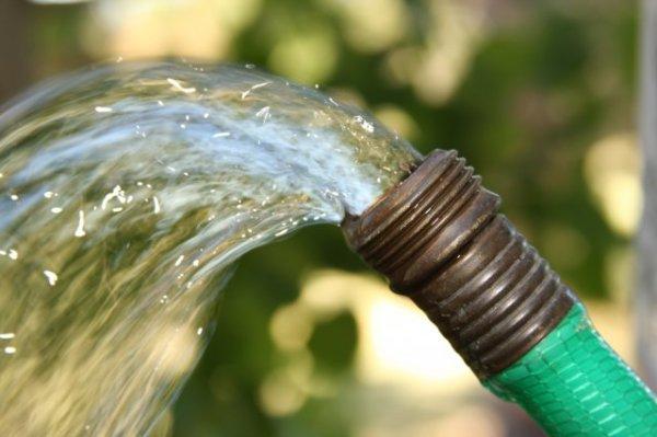 Хороший напор воды нужен и людям и растениям!