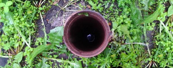 Источник чистой воды на дачном участке