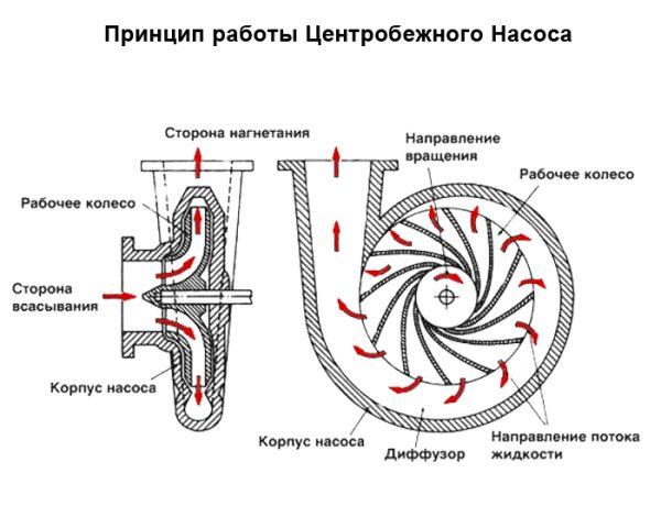 На схематическом фото изображен принцип работы центробежного агрегата.