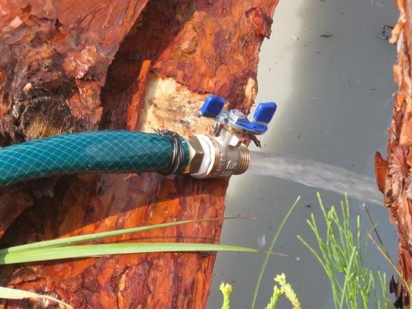 Полноценный поток из шланга свидетельствует об исправности скважины